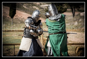 medieval_web_08