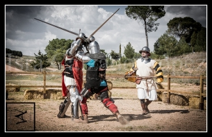 medieval_web_10