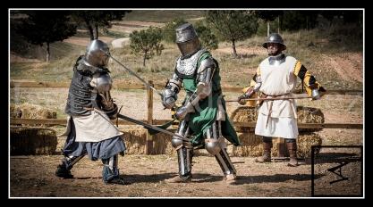 medieval_web_14