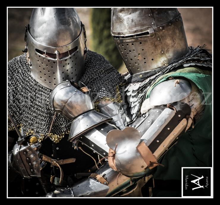 medieval_web_20
